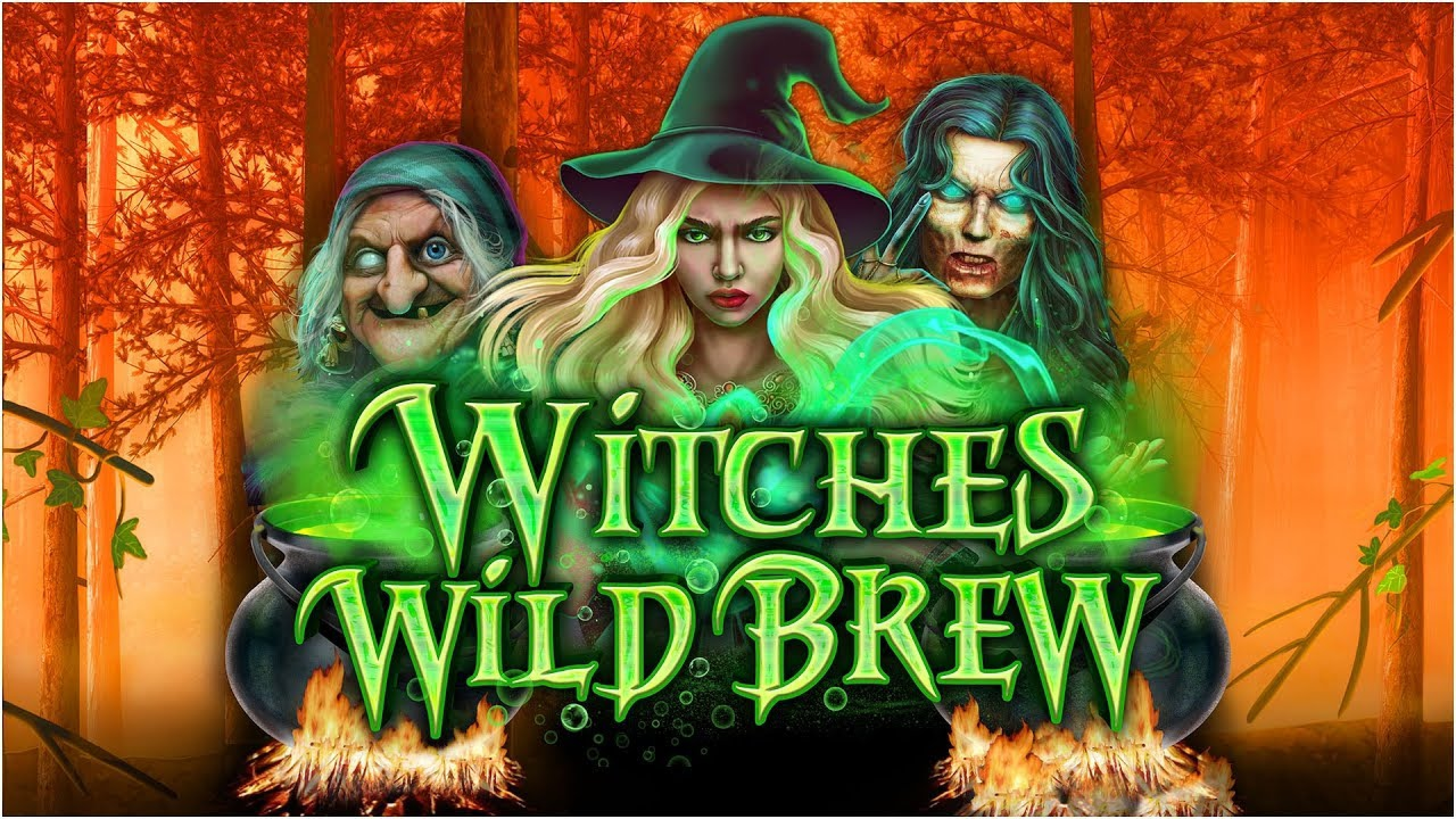 The Witches Wild Brew Online Slot Demo Game by Booming Games