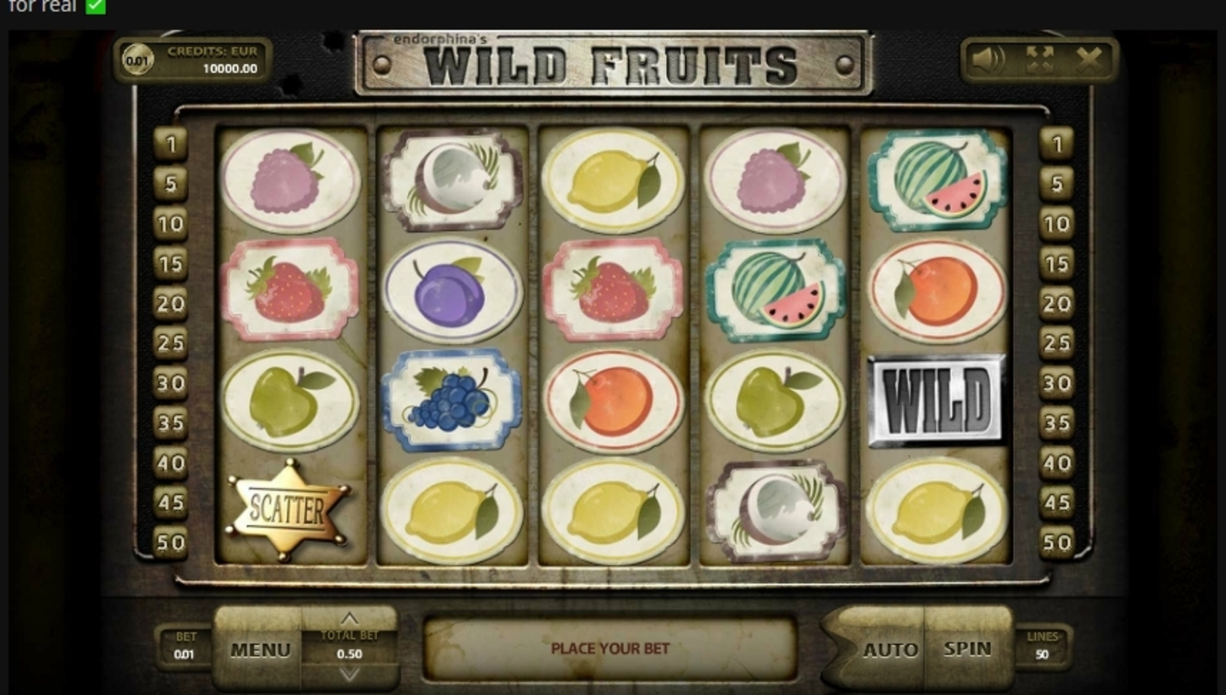 Reels in Wild Fruits (Endorphina) Slot Game by Endorphina