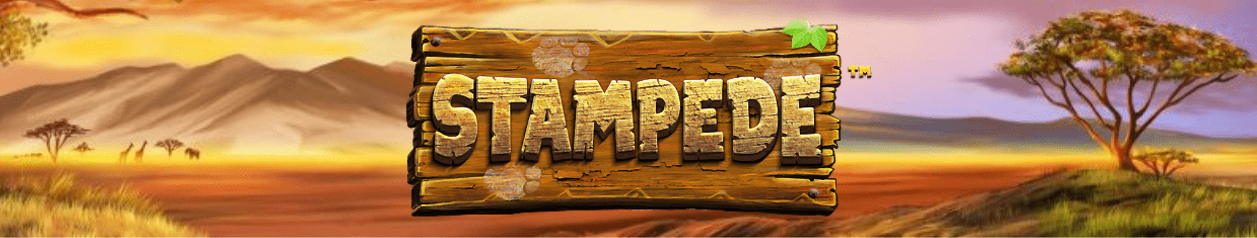 The Stampede Jackpot Online Slot Demo Game by EYECON