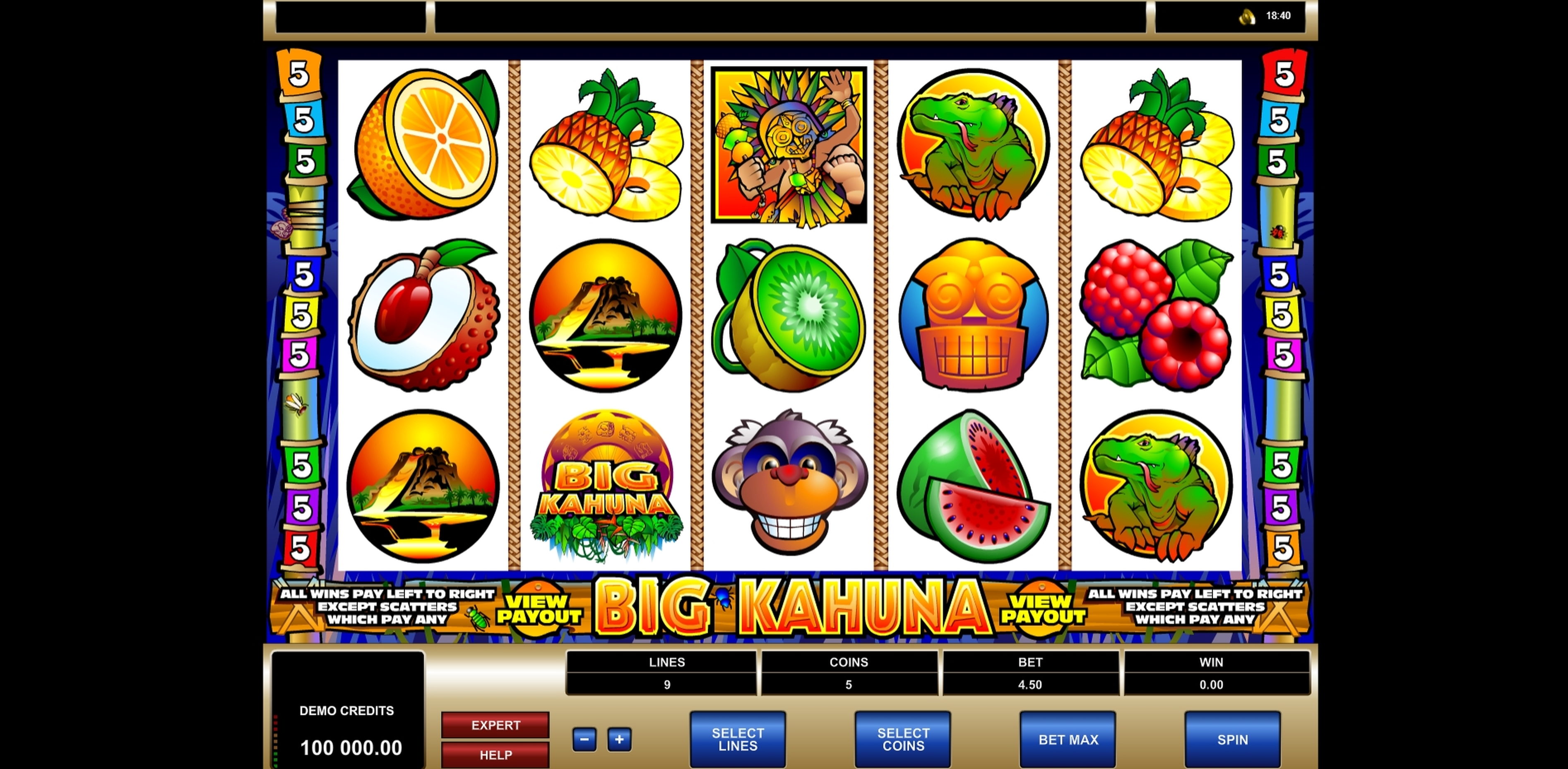 Reels in Big Kahuna Slot Game by Microgaming