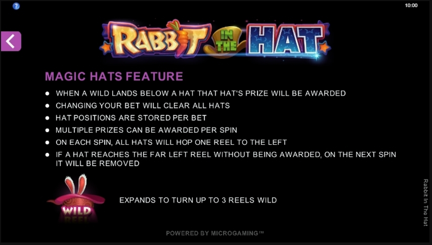 Info of Rabbit In The Hat Slot Game by Microgaming
