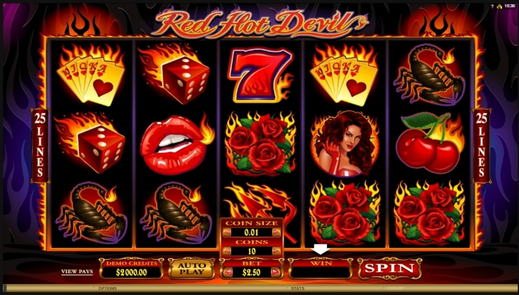 Reels in Red Hot Devil Slot Game by Microgaming