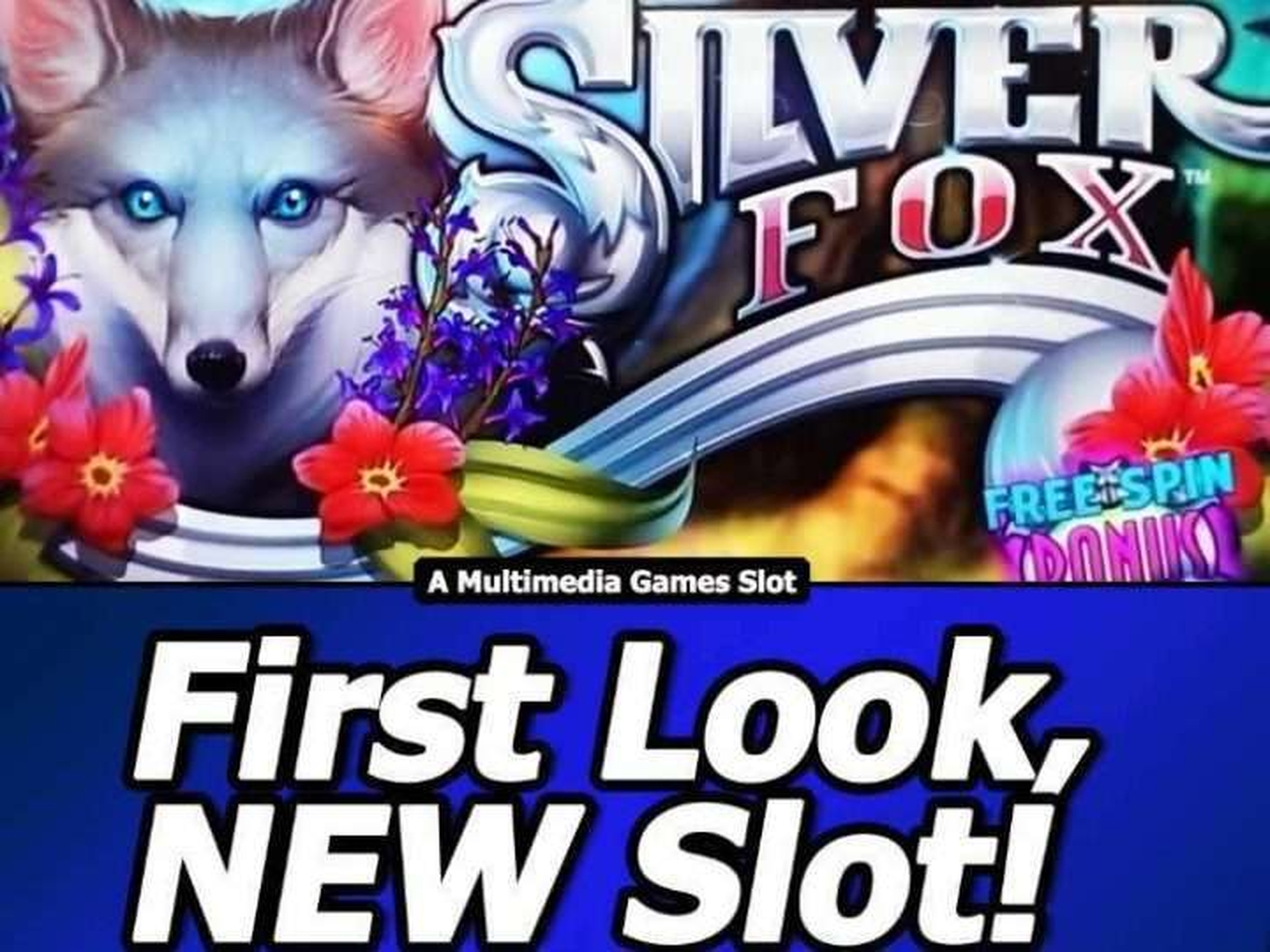 The Silver Fox Online Slot Demo Game by Novomatic