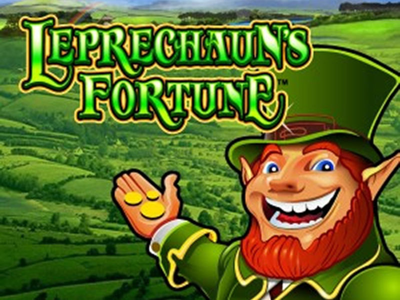 The Leprechaun's Fortune Online Slot Demo Game by WMS