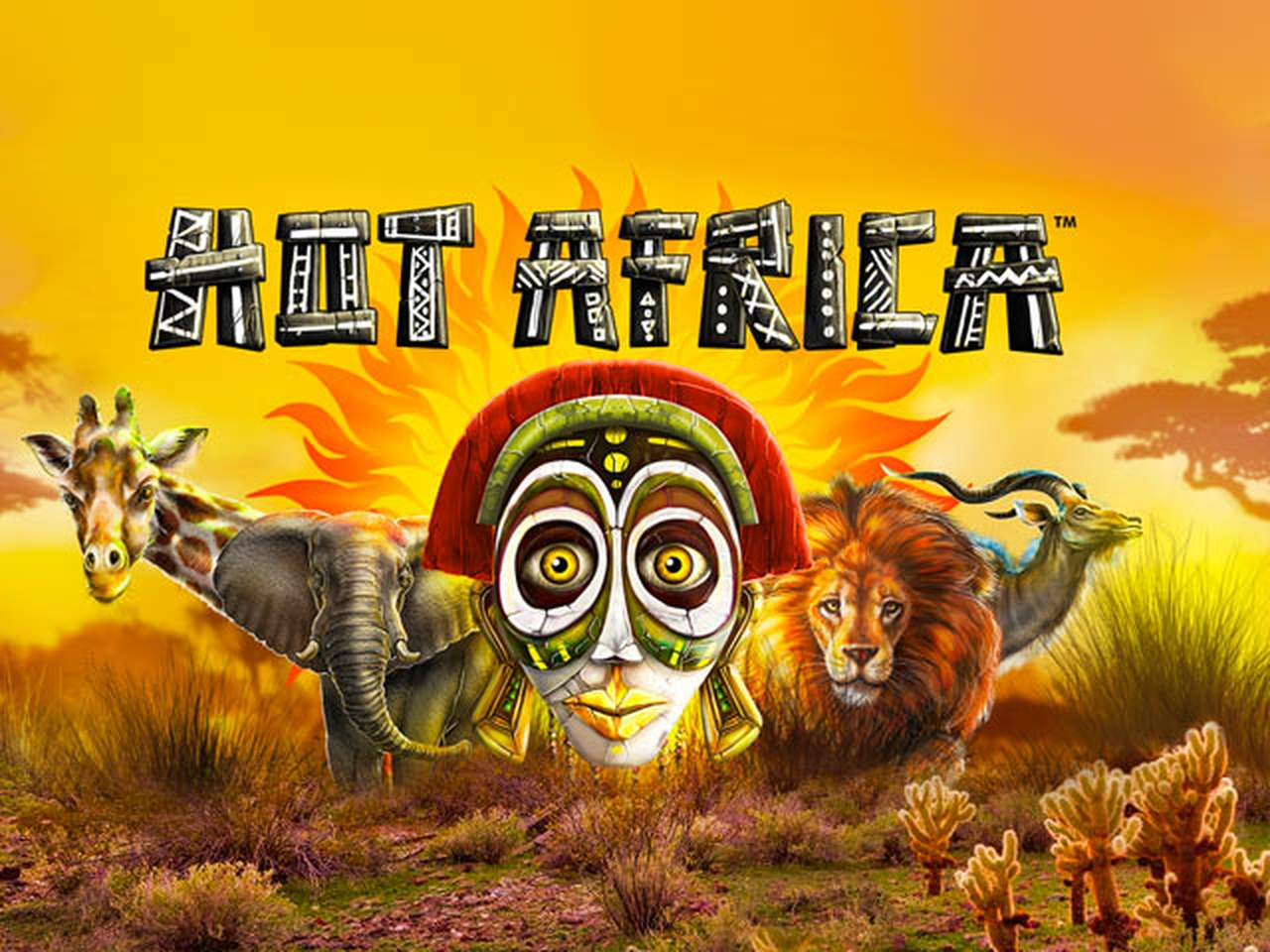 The Hot Africa Online Slot Demo Game by Synot Games